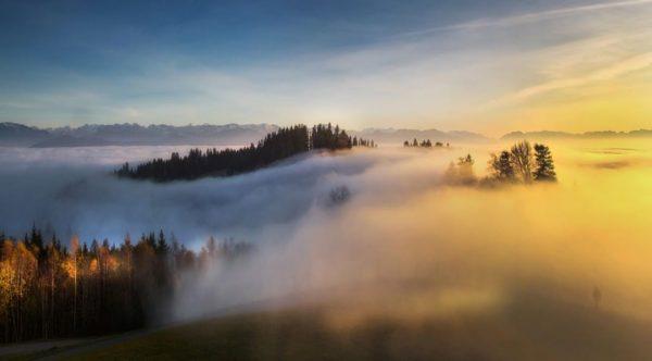 Vom Pfänder #pfänder #vorarlberg #visitvorarlberg #austria #visitaustria #bregenz #alpen #alpenliebe #bodensee #bodenseeliebe #bodenseebilder ...