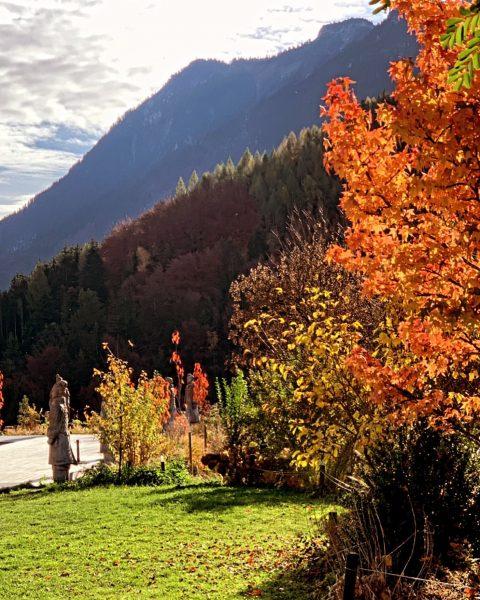 #goodbye #seasonend #alpencampingnenzing #bisbald #wintersaison #naturgenießen #sicherurlauben #campingurlaub #glamping #bergegeniessen Alpencamping Nenzing