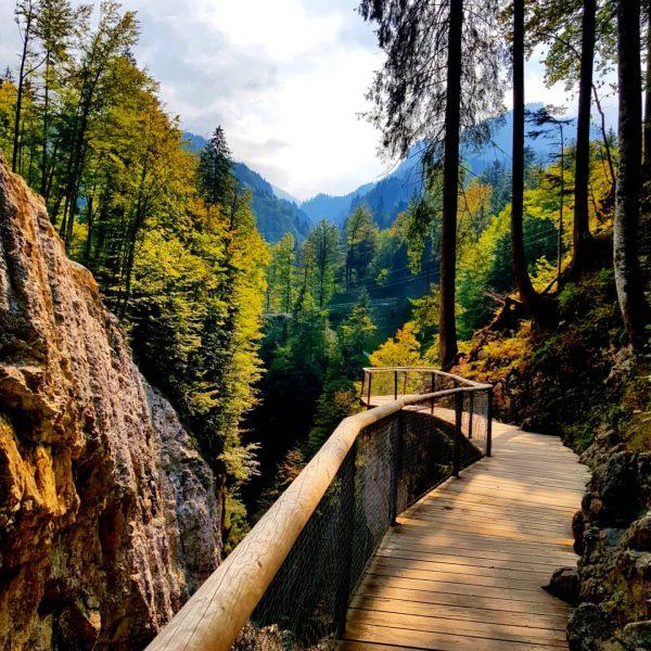 Dornbirn 🏔 - Rappenlochschlucht - Staufensee 🏞 #dornbirn #österreich #rappenlochschlucht #staufensee #mountain #mountains ...