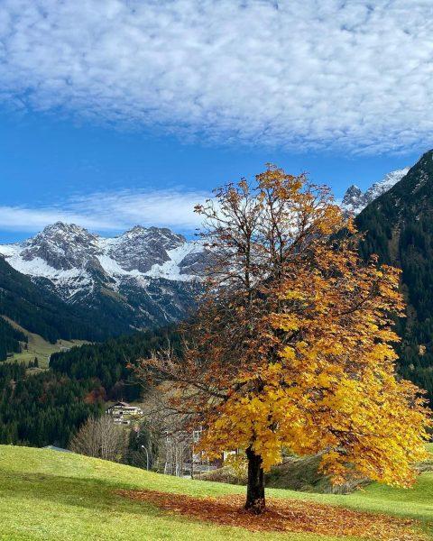 Da hat sich der goldene Herbst noch mal von seiner besten Seite gezeigt 😎🥰🍂 🏔 #Kleinwalsertal#Mittelberg#Berge#Bergliebe#Alpenliebe#Herbst#Herbstfarben#Schnee#UrlaubindenBergen#wandern#Wanderliebe#Wanderlust#Wolken#blauerHimmel#autumn#autumnvibes#autumninthealps#naturelover#Naturfotografie#naturephotography Mittelberg...