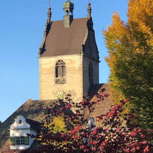 Schöner Herbst #herbststimmung #goldenerherbst #bäume #herbstfarben #visitbregenz