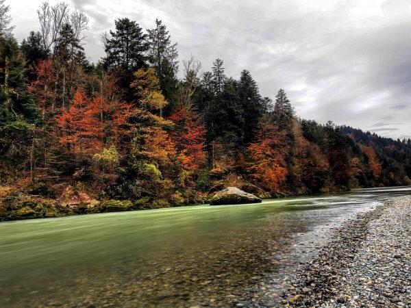 🍁🍂🍁🍂🍁🍂🍁🍂 . . . #autumnvibes🍁 #autumn #herbst #langzeitbelichtung #longtimeexposure #naturephotography #nature #visitvorarlberg #visitaustria ...