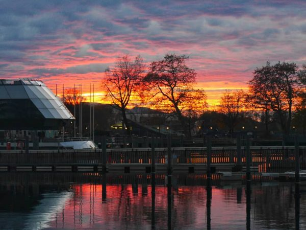 Wenn die Natur zum Sonnenuntergang anfängt zu malen 🌅 da kann kein Künstler ...