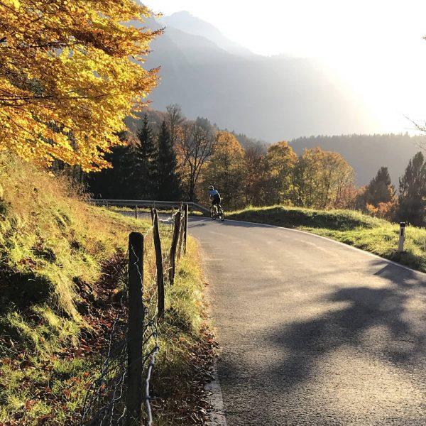 Mit dem Rennrad durch den Herbst. 📸 @hotelbaerenmellau #rennrad #roadbike #roadbikeholidays #cycling #natur ...