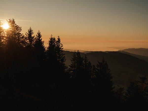 Was erweitert deinen Horizont? 💭 #whatthefaq #faqbregenzerwald #faq #bregenzerwald #friendshipisontheway #vorarlberg #visitvorarlberg #venividivorarlberg ...