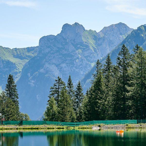 Wir sind in der Zwischensaison angekommen. Die Sommerattraktionen werden Winterfest gemacht und die Natur bereitet sich ebenfalls...