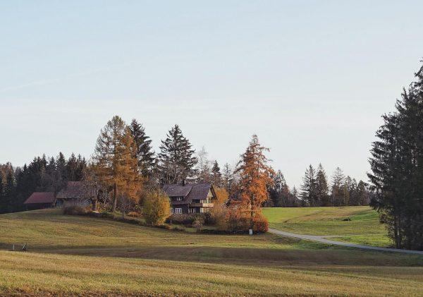 🏡⛰EN BELOW⛰🏡 ————————————————————— Vorarlberg'de sonbahar ve kış nispeten güneşli geçiyor. Bu dönemde dağlara ...