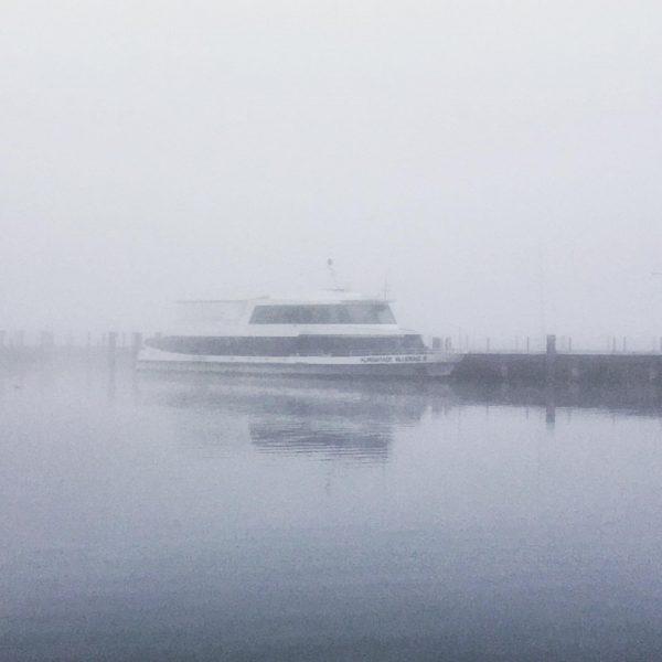#nebelmeer #msalpenstadtbludenz #bodensee #herbst #morgenstimmung #grau