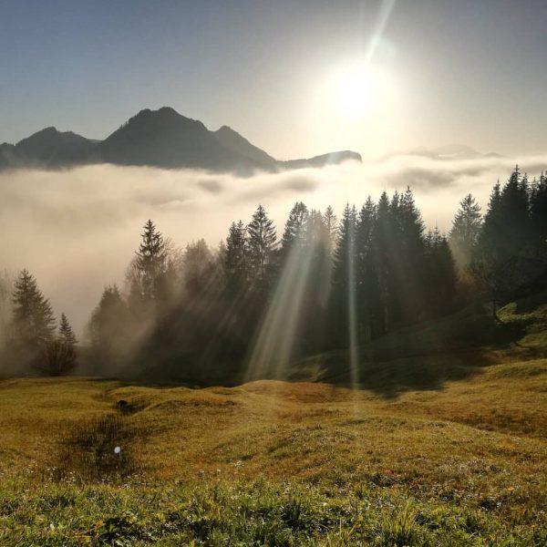 Heute war wieder einer dieser besonderen Tage, an dem einem die Natur zeigt ...