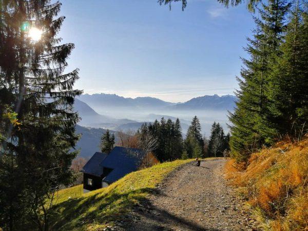 Beautiful day🍁☀️🍂 #autumnmood #naturegram #wanderlust #Vorarlberg Furx