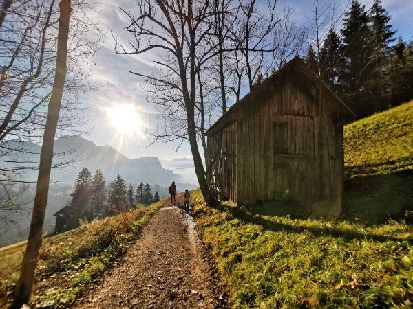 🍁🍂🍂🍁 . . . #hiking #hikingadventures #autumnvibes🍁 #austriavacations #sunshine #weekendvibes #landscapephotography #landscapelovers #photooftheday ...