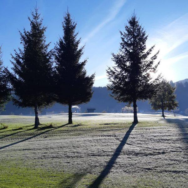 Der gestrige Tag startete für Anna auf dem Golfplatz! Nachdem der Frost den ...