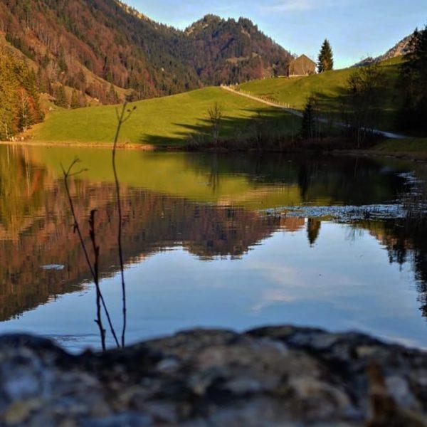 Bevor der Winter kommt... #austria #bregenzerwald # #vorarlbergtourismus #hikingtheglobe #hiking #awesomeearth #wanderlust #keepexploring ...