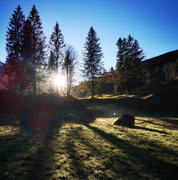 Mooie herfstdagen. Laat de winter maar komen 😍 . . . #sonnenuntergang #herbstliebe #herbst #herfst #zonlicht #sunlight...