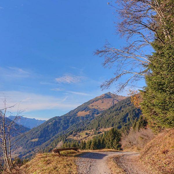 Goldener Herbst im Montafon 🍂 #heimatliebe . . . . . #herbst #wandern #bergwelten #bergliebe #montafonmoments #meinmontafon...