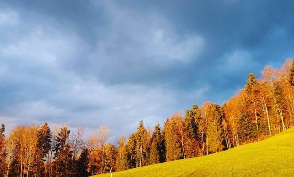 #buntenatur🍁🍂🌞 #frischeluft #visitbregenzerwald #visitvorarlberg #venividivorarlberg Hotel Die Wälderin