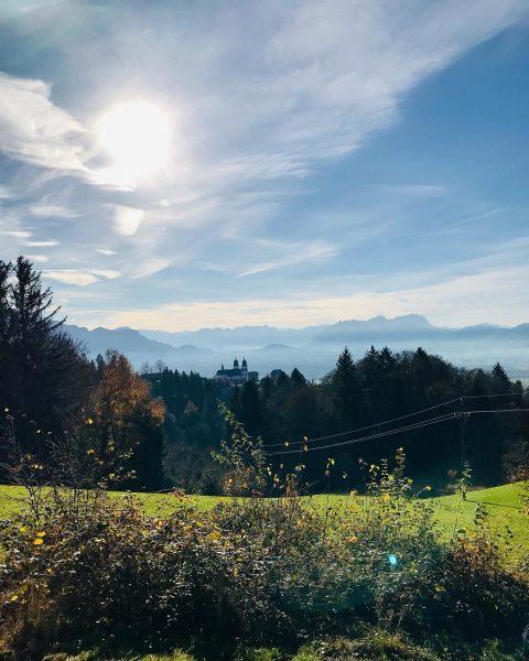 Herbsttage im Dreiländereck... Unser Blick fällt runter ins Rheintal, zu den Schweizer Bergen ...