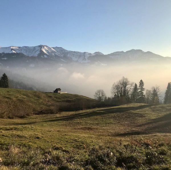 #trailrunning #mountains #instamountains #dornbirn #kehlegg #vorarlberg #meinvorarlberg #abovethefog Kehlegg, Vorarlberg, Austria