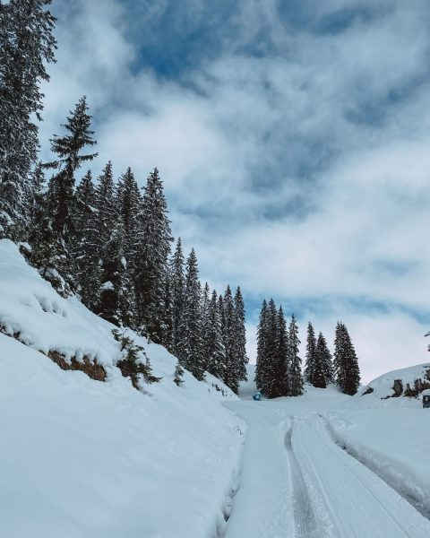 The road to paradise ☃️ Quite literally the road to paradise, as this is the road that...
