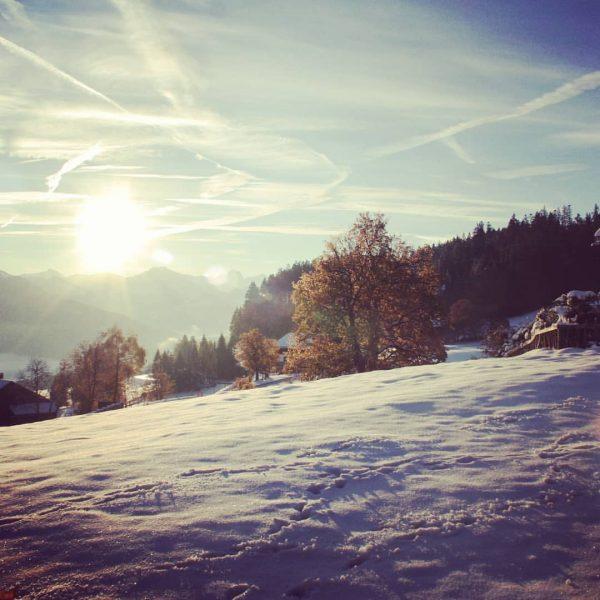 Winterimpressionen ❄🌞 #veggihotels #biohotel #veggieholidays #visitbregenz #visitdornbirn #familyhotel #winterurlaub #familienurlaub #govehan #bodenseeliebe #veganhotel ...