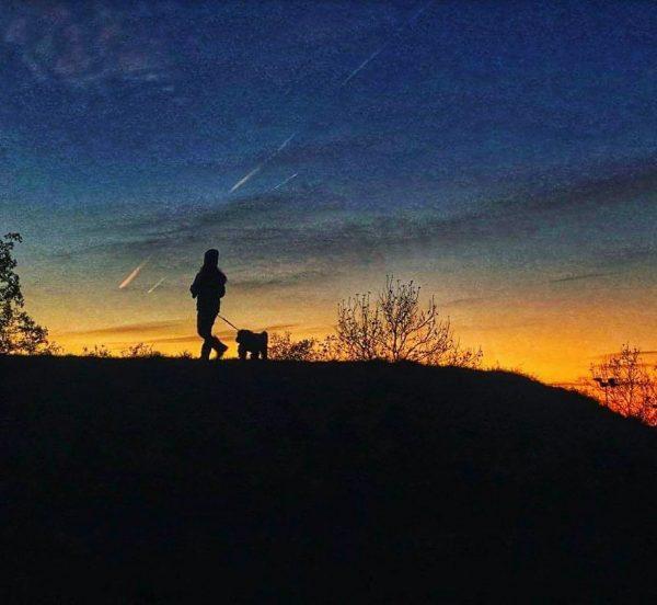 #doglover #children #nature #sky #cold #blue #orange #freshair #happiness #life #bichon #austria🇦🇹 #dornbirn ...