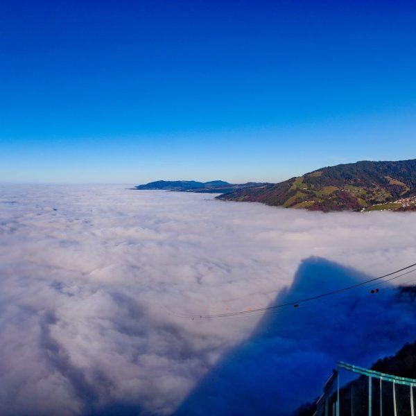 Oben herrlich warm und unten einfach nur Nebelsuppe ☀️🌫☀️🌫☀️🌫☀️🌫☀️🌫☀️🌫☀️🌫☀️🌫☀️🌫☀️🌫☀️🌫☀️🌫☀️🌫☀️🌫☀️🌫 #karrenseilbahndornbirn #karrenseilbahnbergstation #karrenseilbahn❤️ #nebelmeer ...