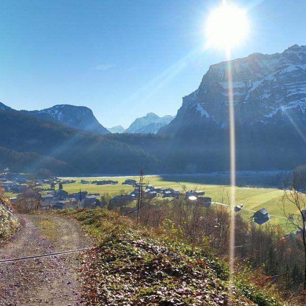 ...another day in paradise! #edithswohnen #bizautrail #bizau #bregenzerwald #visitbregenzerwald #vorarlberg #visitvorarlberg #trailrun #trailrunning #svbizautrailteam #dynafit #speedup #salomon...
