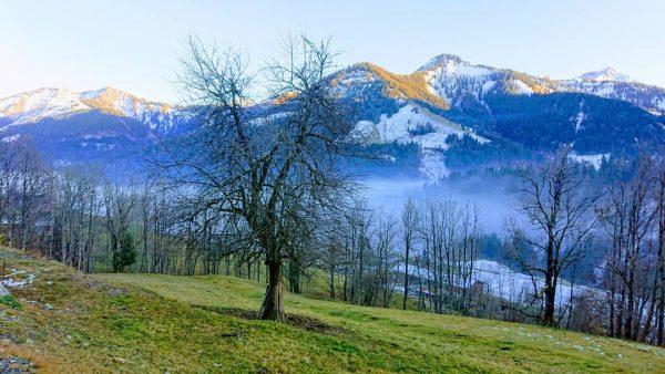 More #ebnit #berge. #dornbirn #vorarlberg #österreich #nebel #zwischenhimmelunderde