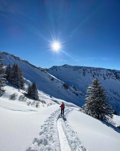 a walk in nature walks your soul back home 💙 #skitouring #berge #bergmomente ...