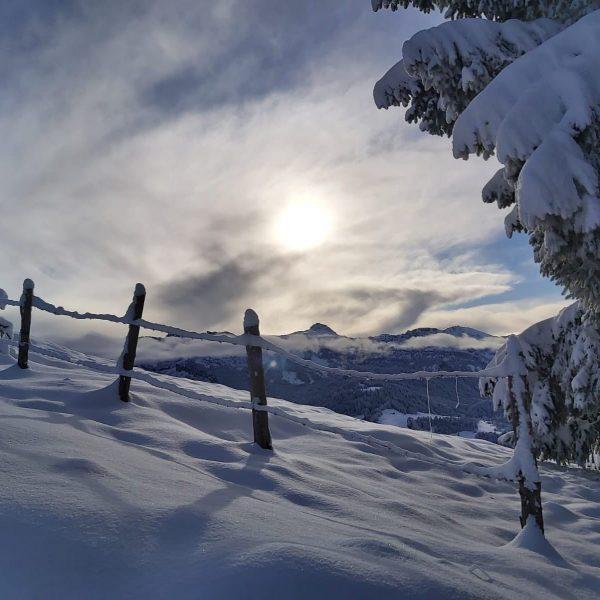 #schneeschuhwandern #winterwonderland #bregenzerwaldalpen #vorweihnachtszeit 📸 Danke an @kevinnussbaumer Sibratsgfäll, Vorarlberg, Austria