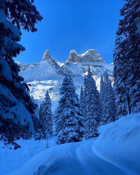 Winter Wonderland❄️❄️❄️ #gauertal #lindauerhütte #skitouring #montafonmoments #montafon #winterwonderland #dreitürme #vordussa #picoftheday #bergwelten #bergpic ...