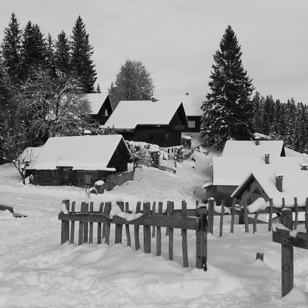 #winterlandschaft 📷 (c) karl seitinger 2020 . . . [...] #bnw_shot #bnwsouls #bnw_mood ...
