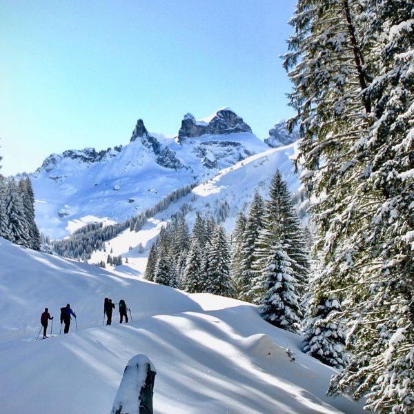 Skitour durchs tief verschneite Gauertal zur Lindauerhütte...... #gauertal #lindauerhütte #skitouring #montafon #montafonmoments #winterwonderland ...