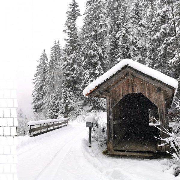 Ein Blick um's Eck zeigt uns den tief verschneiten Bregenzerwald. Genauer gesagt die ...