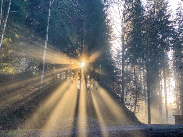 #sunset #hike above the fog Pfänder