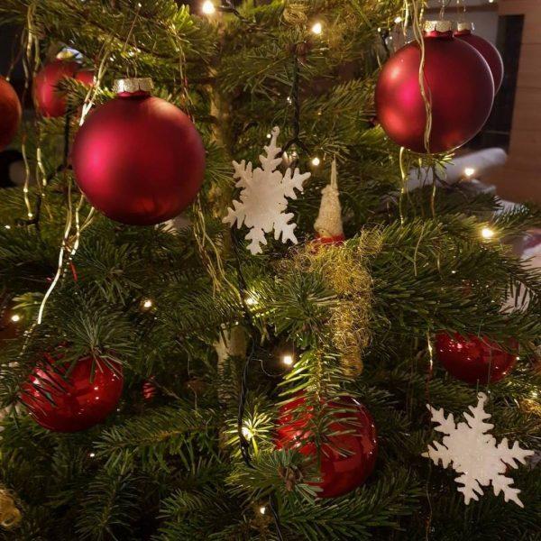 Wir wünschen Ihnen ein wunderschönes, wenn auch spezielles Weihnachtsfest mit Ihren Liebsten 🎄 ...