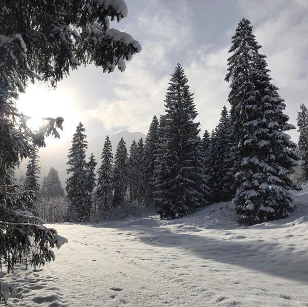 #winterwonderland #snow #trees #merrychristmas #christmas #winter #december #beautyofnature #kleinwalsertal #mittelberg #vorarlberg #austria #weloveaustria ...
