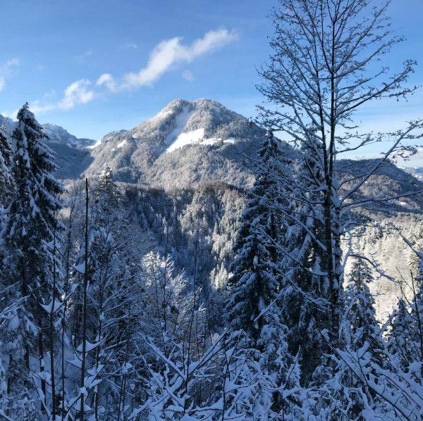 #kobelalpe #rudach #dornbirn #trailrunning #mountains #winterday #instamountains #vorarlberg #myvorarlberg Kehlegg, Vorarlberg, Austria