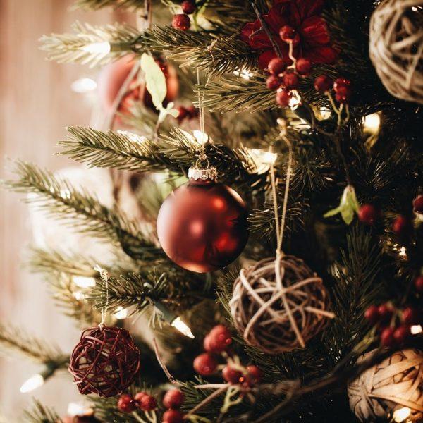 Von Herzen wünschen wir Euch allen Frohe Weihnachten, Gesundheit und erfüllte Momente im ...