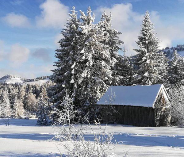 #hochhäderich #hittisau #riefensberg #bregenzerwald #vorarlberg #austria #nature #landscape #winter #winterwonderland #snow #mountains #beautifulday ...