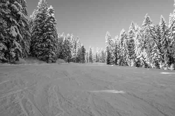 ❌❗❄Saisonstart verschoben❄❗❌ Auf Grund der aktuellen Schneelage kann der Betrieb 𝗡𝗜𝗖𝗛𝗧 wie geplant ...