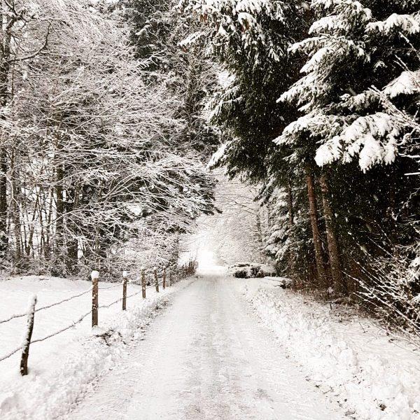 Winter in Hittisau 🏔☃️❄️ Da leben und arbeiten, wo andere Urlaub machen. Mit ...