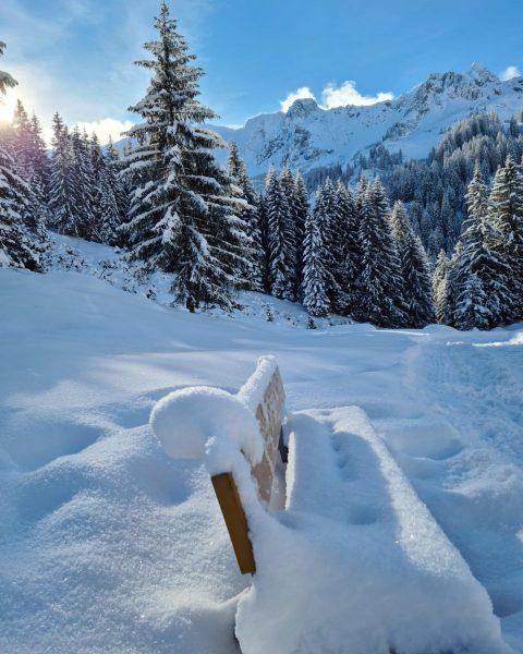 Rast auf der Schneebank während unserer #Winterwanderung am Bergunt Ründele! ☀️☀️❄️❄️🤩 #altekrone #hotelaltekrone ...