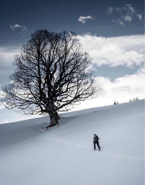 Bregenzerwald I Schetteregg 01 #photooftheday #picoftheday #photography #bregenzerwald #visitbregenzerwald #vorarlberg #austria #winter #snow ...