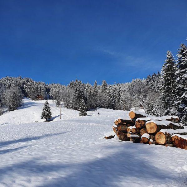 Wir genießen die verschneite Landschaft bei einem Spaziergang ⛄😍 . . . #winterwonderland ...