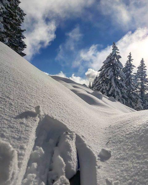 Eine wunderbar verschneite Winterlandschaft ❄❄❄ . . #winterwonderland #winter #vorarlberg #bregenzerwald #laterns #snow ...