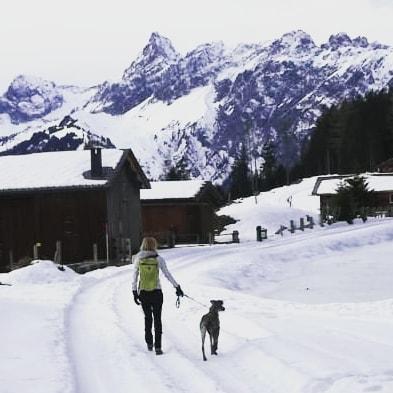 Fritzen See #montafon #wanderlust #tierschutzhund #cloud7 # Bartholomäberg