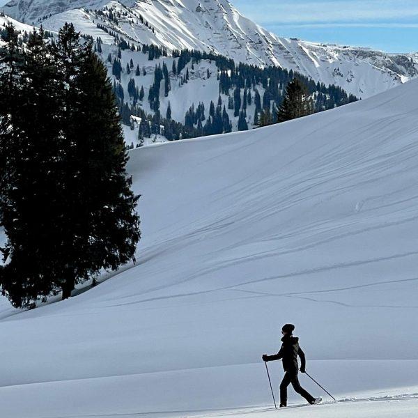 """In der Stadt """"kämpfen"""" wir weiter mit der Beseitigung der Schneemassen, oben zeigt sich eine traumhafte Märchenlandschaft...."""