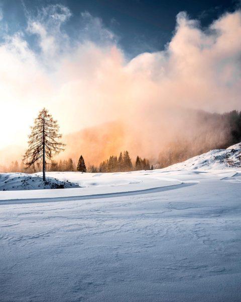 📍Bürserberg . . . . . . #schneelandschaft #schnee #winter #snow #nature #natur ...