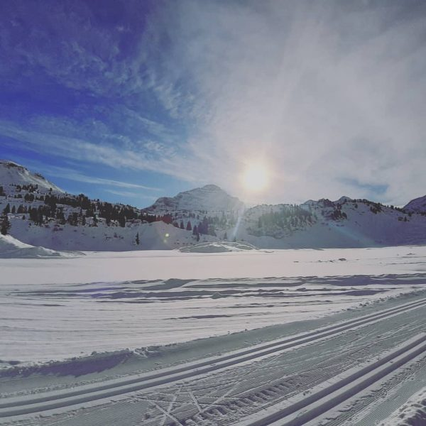 Like a fairytale...❄🤎😍 #berghofschroecken #liveisbetterinthemountains #nosnownoshow #crosscountryskiing #sun #fun #winter #love #holiday #family ...